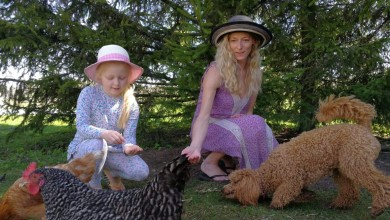 Ingrid I (koer , kana ja laps